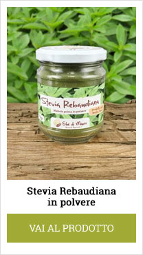 stevia rebaudiana in powder form