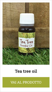tea tree mauro herbs
