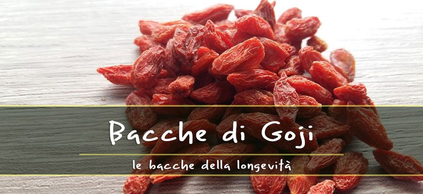 Goji Berries All The Benefits Of Longevity Berries