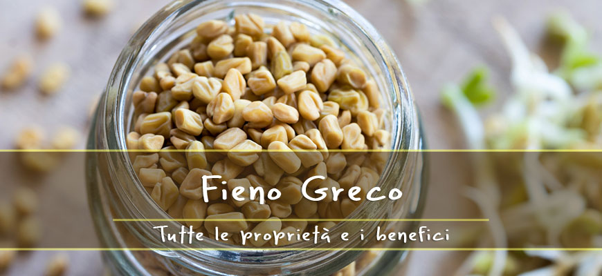 fenugreek properties
