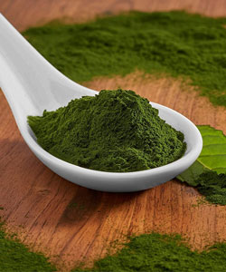 spirulina lose weight