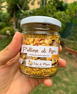 pollen in granules