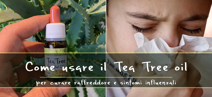 tea tree oil use for cold
