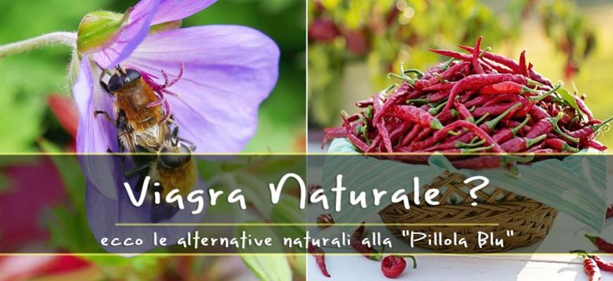 Ecco cos'è il Viagra dell'Himalaya, il fungo che aiuta l'erezione