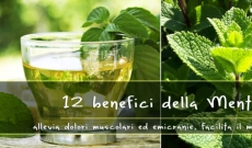 12 benefits of Mint. Treat migraines, muscle and menstrual pains ...